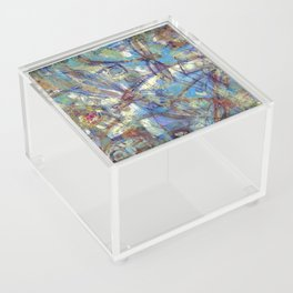 Dragonflies in blue Acrylic Box