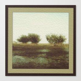 Mangrove Flats Canvas Print