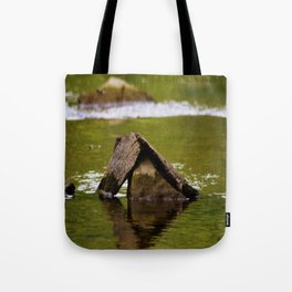 Ancient Tote Bag