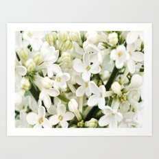 Little Blossom Art Print