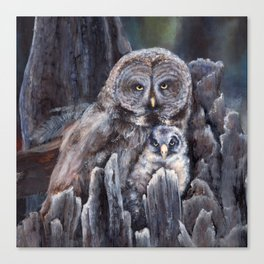 Wood  -  Owls Canvas Print