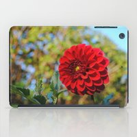 dahlia iPad Cases featuring Dahlia by Renee Trudell