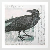 Raven of Marburg - Square Art Print