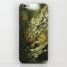 Wormwood iPhone Skin