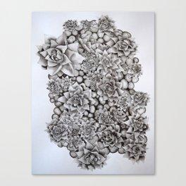 Watercolour pebbles and succulents Canvas Print
