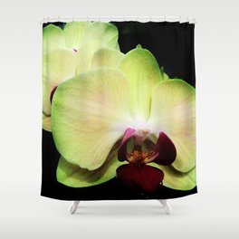 Green Orchids Shower Curtain