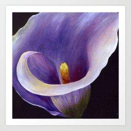 Lavender Calla Lily Art Print