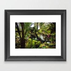 Climbing the Garden Framed Art Print
