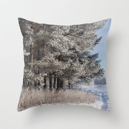 Snowy Path by Winter Woods Throw Pillow