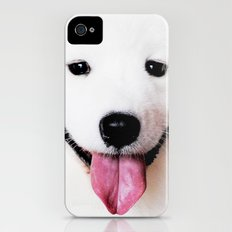 SAMOYED - THE SMILING BREED iPhone (4, 4s) Slim Case