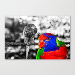 The bird in paradise Canvas Print