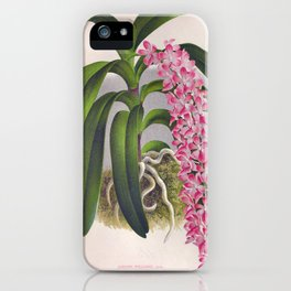 Vintage Lilac Orchid Aerides Fieldingi Lindenia Collection iPhone Case