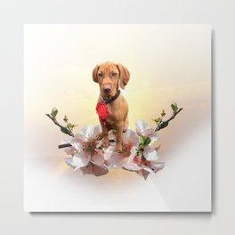 Vizsla Puppy Metal Print