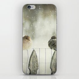 Weathering the Snow iPhone Skin