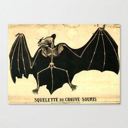 Squelette de chauve-souris Canvas Print