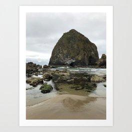 Haystack Rock Marine Garden Art Print