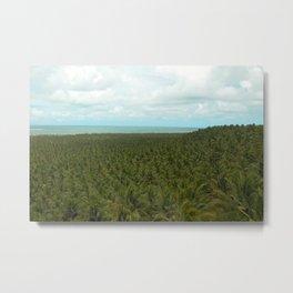 Tropical Palm Tree Forest Landscape, Gunga, Brazil Metal Print