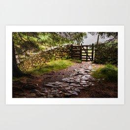 The Path at Blea Tarn Art Print