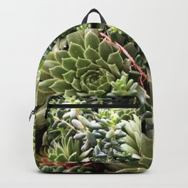 Succs Don't It? Backpack