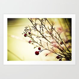 life in the winter Art Print