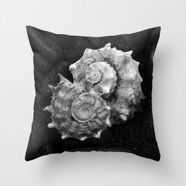 Shell No.3 Throw Pillow