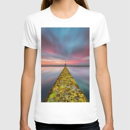 Fixed Link Or The Road To Hell T-shirt