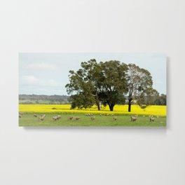 Country Western Australia Metal Print