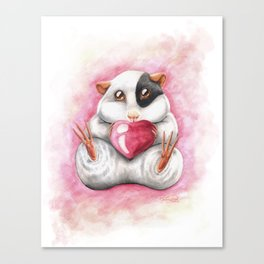 Sweet guinea pig Canvas Print