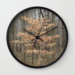 Beautful tree in John Heinz Wildlife Refuge Wall Clock