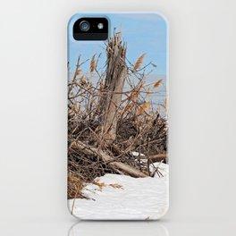 Treasure Trove iPhone Case
