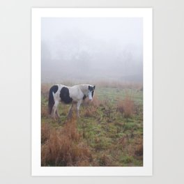 Black and White Horse Art Print