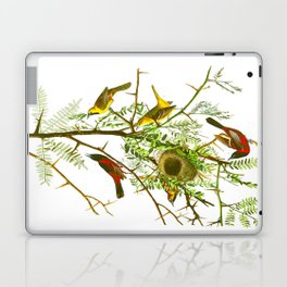 Orchard Oriole Bird Laptop & iPad Skin