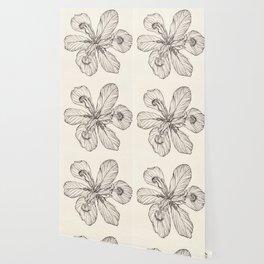 Floral Ink Illustration Wallpaper