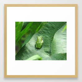 Green Camouflage in the Arrowheads Framed Art Print