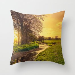 Dawn On The Dearne Throw Pillow