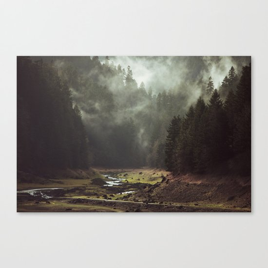 Foggy Forest Creek Canvas Print
