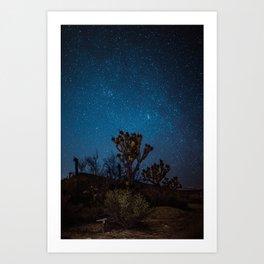 Midnight Stars at Joshua Tree Art Print