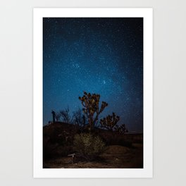 Midnight Stars at Joshua Tree Art Print