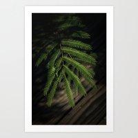 The Fern Art Print