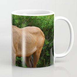 Wapiti At The Roadsite Coffee Mug