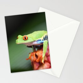 Rain Forest Stationery Cards