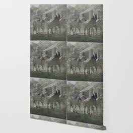Arabian horses Wallpaper