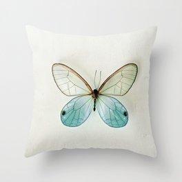 Blue Gold Glasswing Throw Pillow