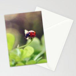 Ladybird, ladybird, fly away home.. Stationery Cards