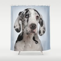 great dane Shower Curtains featuring Great dane by Life on White Creative
