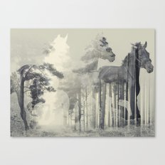 Like a Horse in the woods Canvas Print