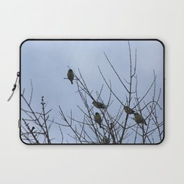 Winter Birds on Bare Branches Laptop Sleeve