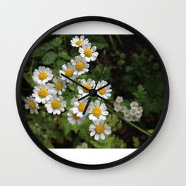 Nothing is Coming Up Daisies Wall Clock