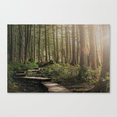 Adventure Nature Path Canvas Print