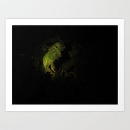 Nighttime in the Garden, 2 Art Print
